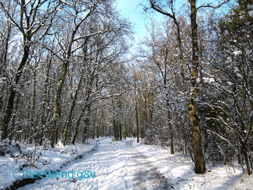20130210 Perfecte winterdag 13
