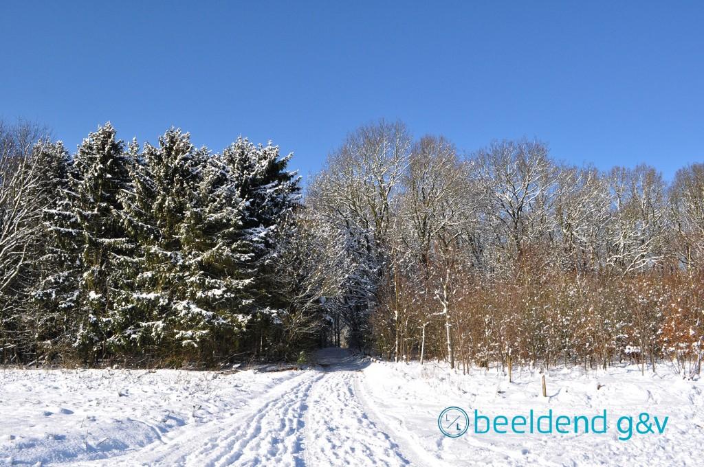 20130210 Perfecte winterdag 2