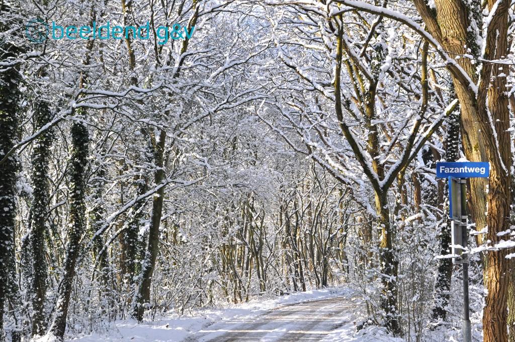 20130210 Perfecte winterdag 4