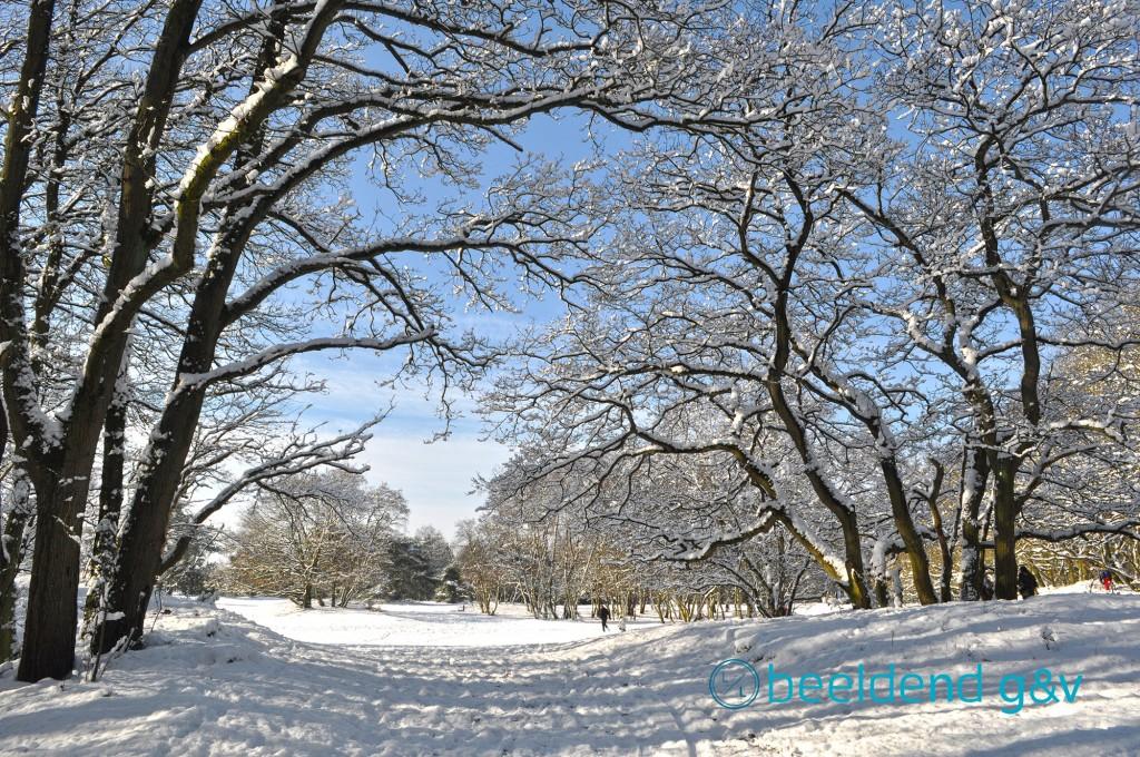 20130210 Perfecte winterdag 5