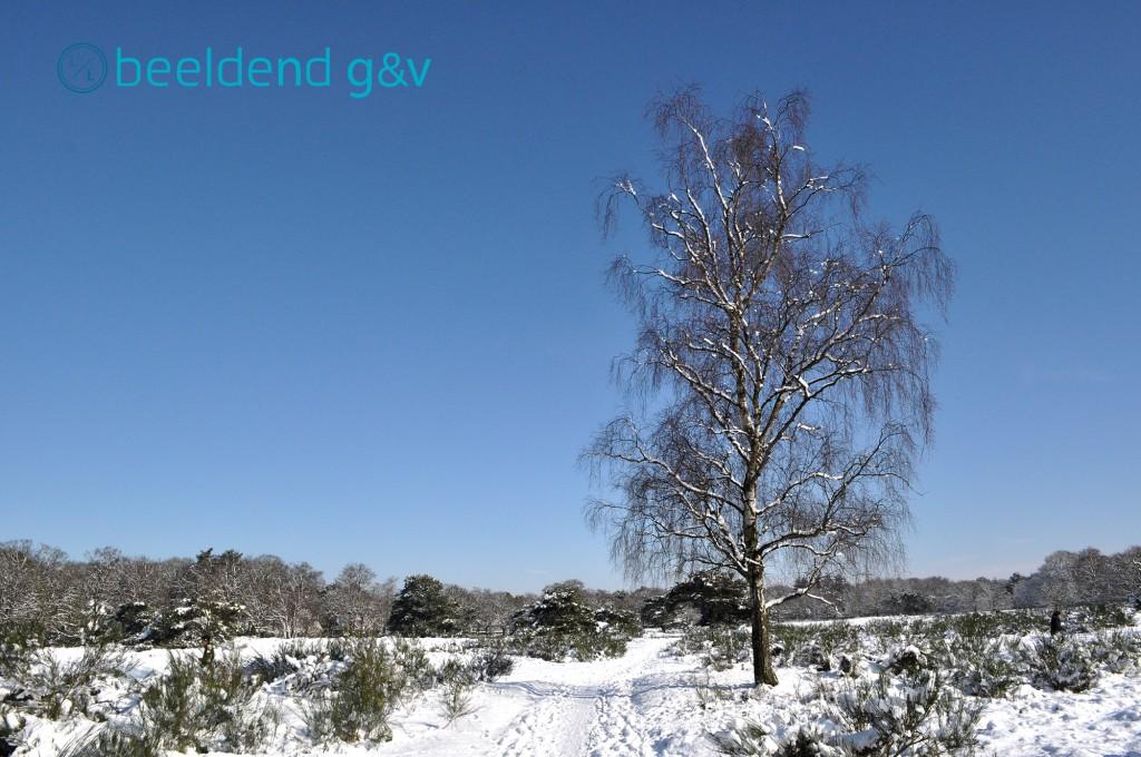 20130210 Perfecte winterdag 7