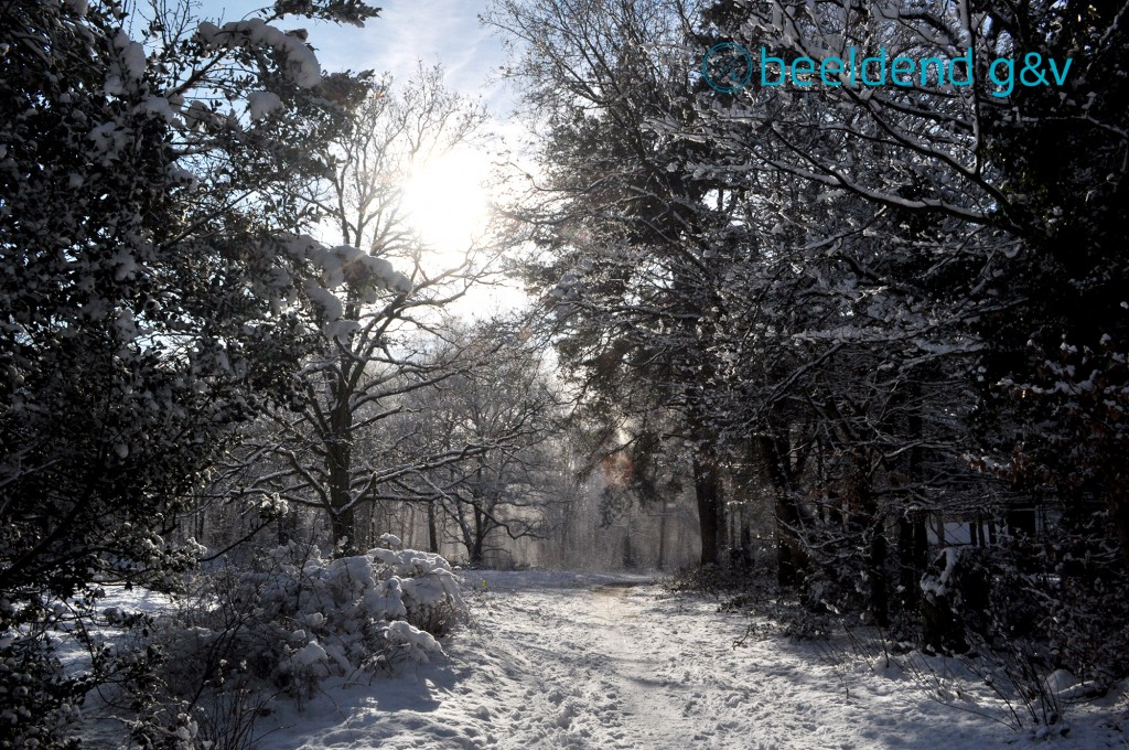 20130210 Perfecte winterdag 8