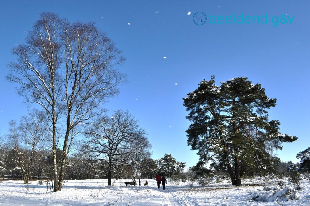 20130210 Perfecte winterdag 9