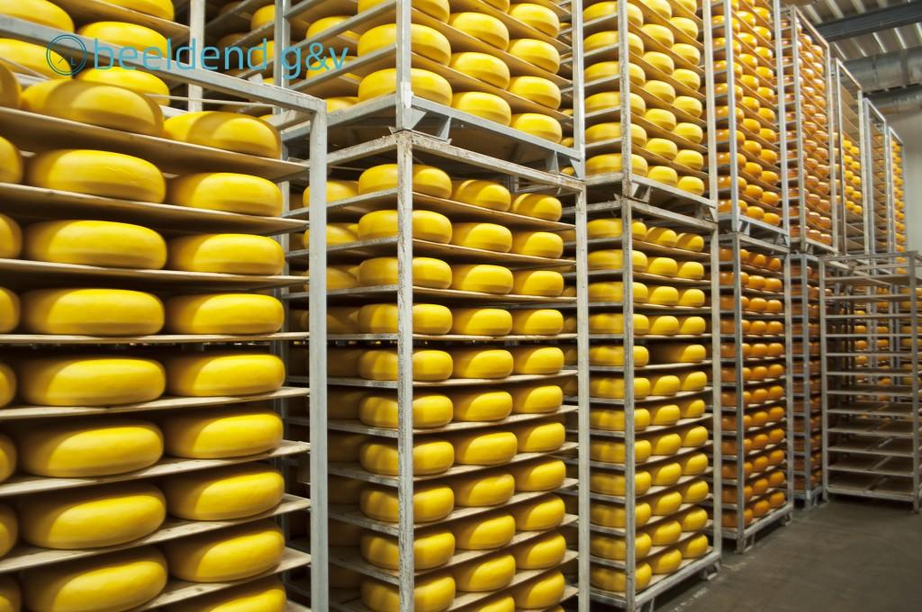 20160421 Kaas, kaas en nog eens kaas