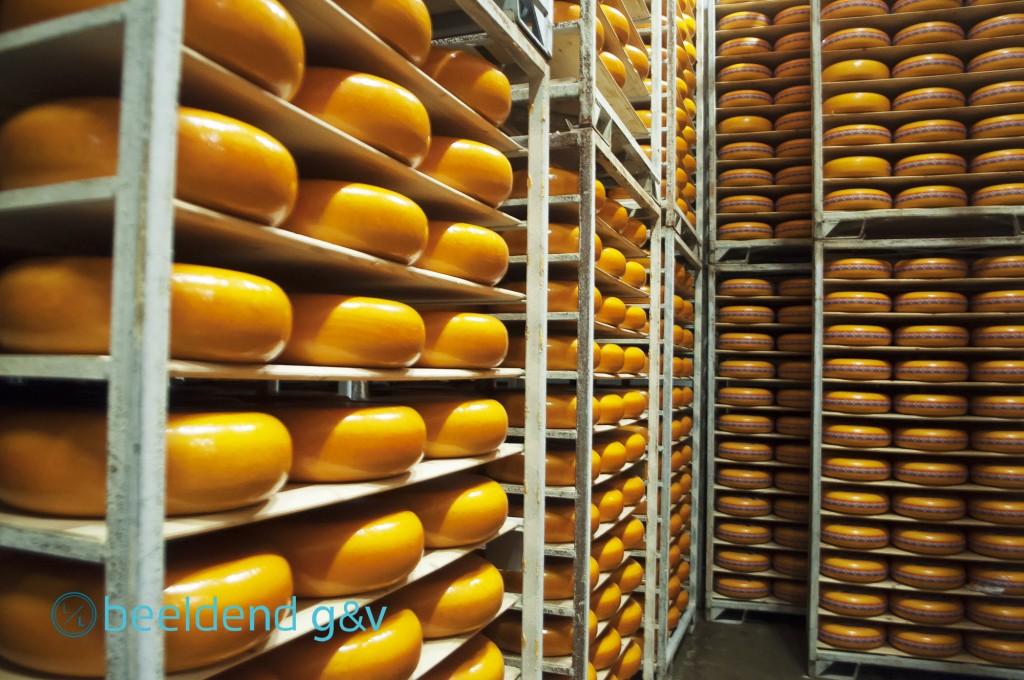 20160421 Kaas, kaas en nog eens kaas 2