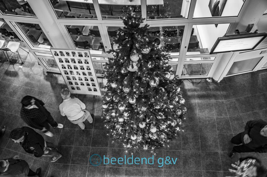 De gemeentelijke kerstboom
