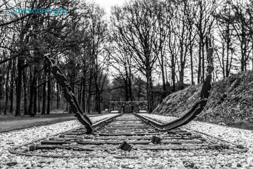 20210415-Kamp-Westerbork-12-zw